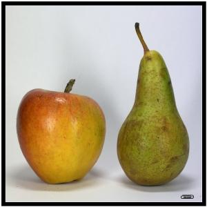 appelsgroot